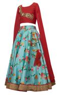 Extended Sleeve Zardozi embroidered Blouse With Skirt