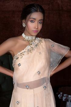 Embroidered Organza Top with Dhoti Pant