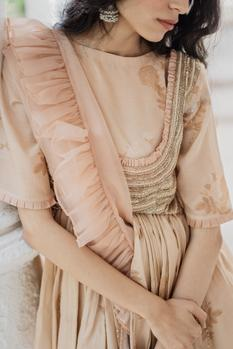 Organza Saree with Embellished Top