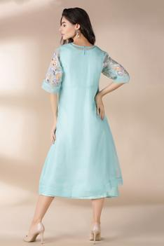 Organza Embroidered Dress
