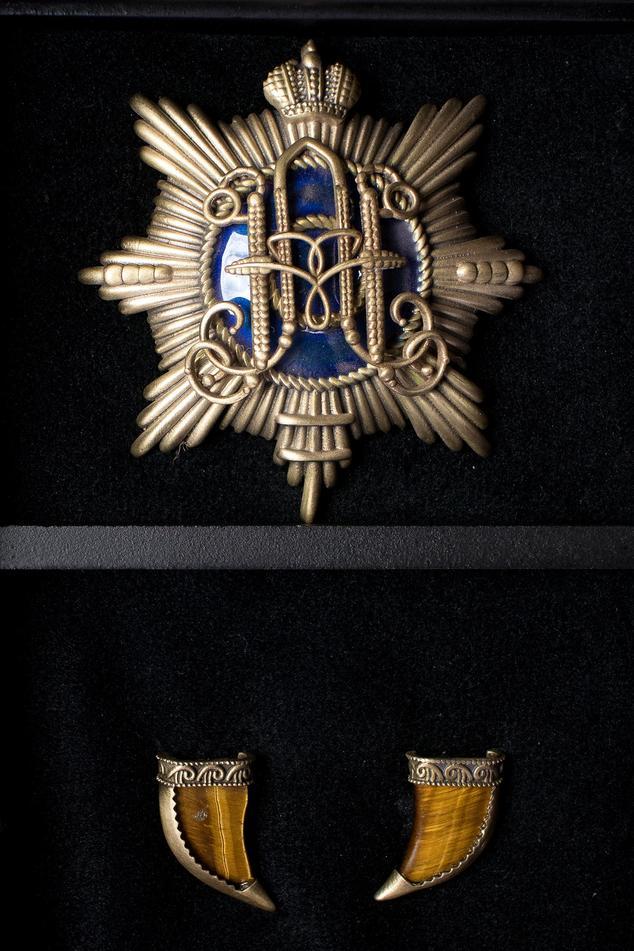Emblem Brooch & Tiger Eye Collar Tips Set