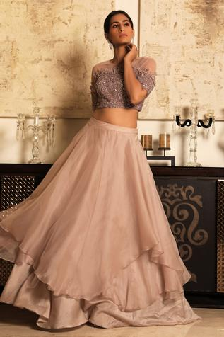 Organza Skirt with Embroidered Blouse