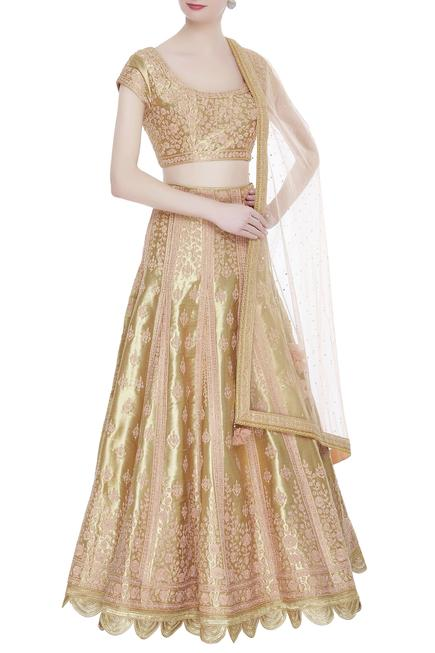 Applique embroidered lehenga with blouse and dupatta