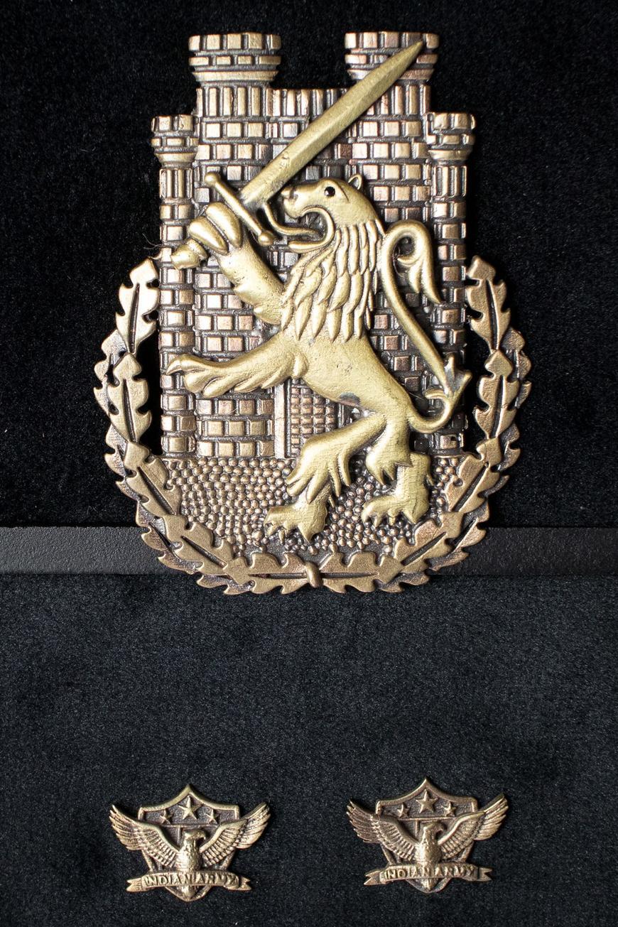 Lion Brooch & American Eagle Collar Tips Set