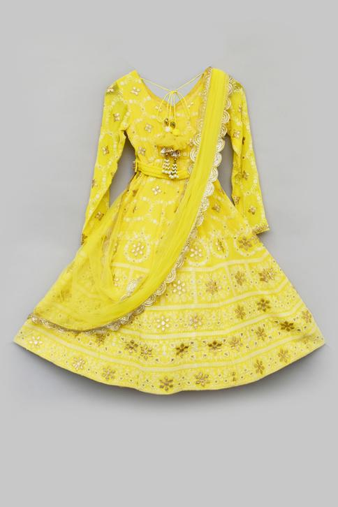 Lucknowi Embroidered Anarkali with Dupatta